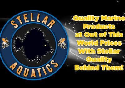 stellar-slide1