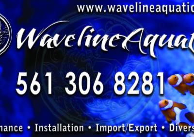 waveline 20x10 mag