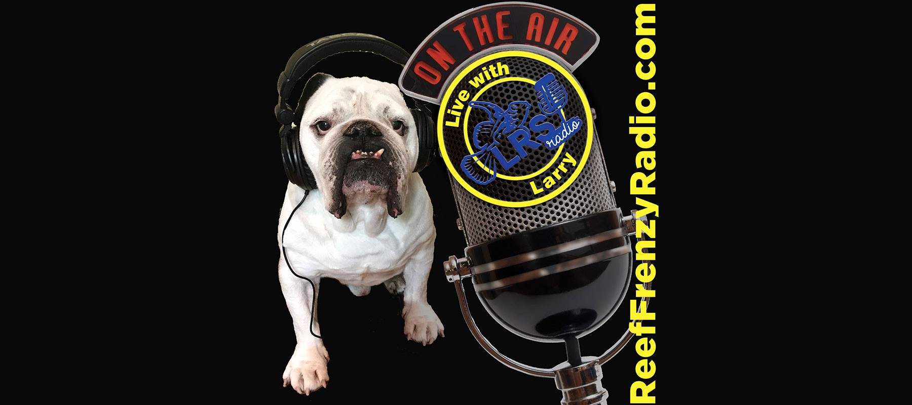 reeffrenzyradio.com podcast website