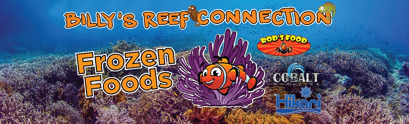 billysreef-10ft-store sign
