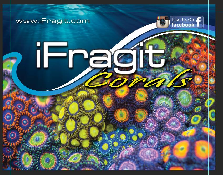 ifragit-10ft backdrop