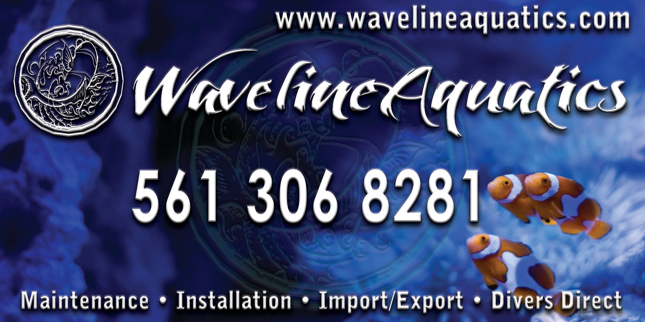 wavelineaquatics-carmags